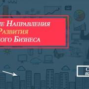 направления развития малого бизнеса